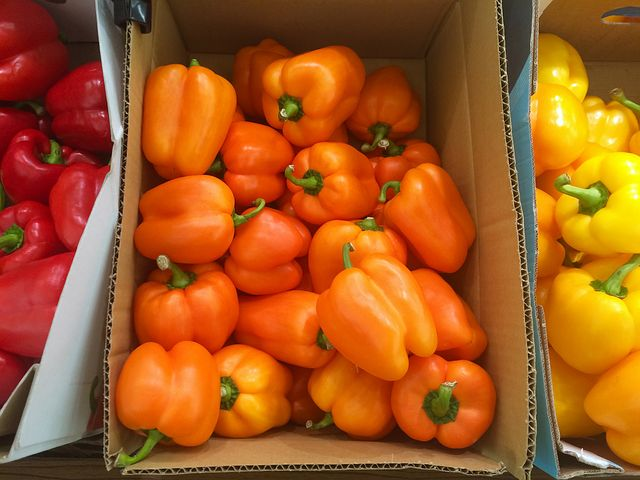 boxes-of-peppers