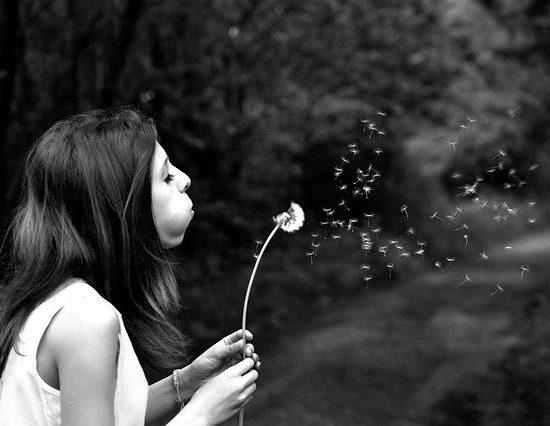 making-a-wish